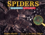 Spiders: Biggest! Littlest! (click for larger picture)