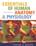 Essentials of Human Anatomy and Physiology (click for larger picture)